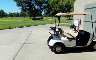 Is The EZGO Golf Cart The Best Option?