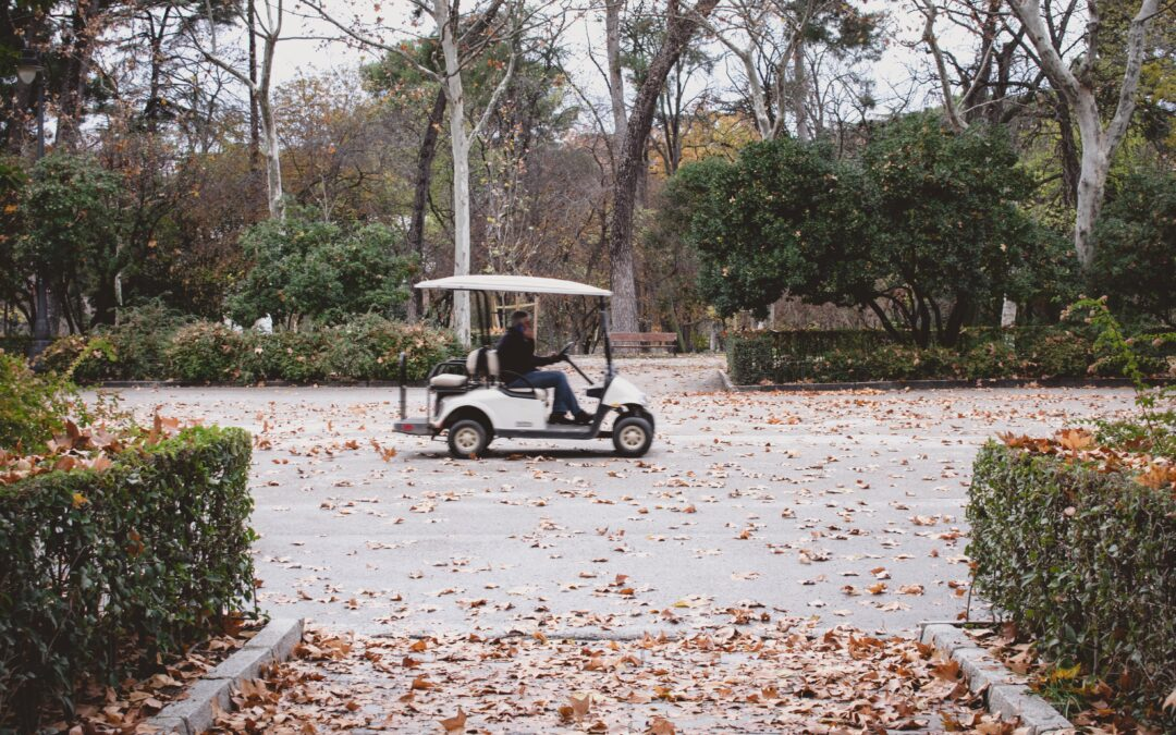 """Golf Carts For Sale Near Me"" – Why Sometimes The Closest Carts Are The Best Deals!"